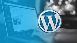 WordPress Themes, Plugins, and Frameworks